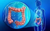 Как быстро у человека развивается рак кишечника